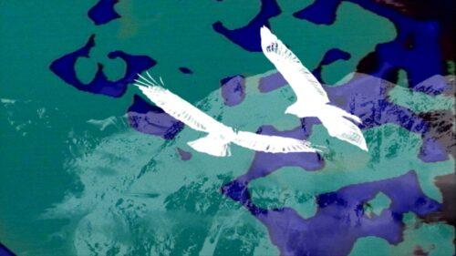 Possession Records - Short Film 02 | Still 2